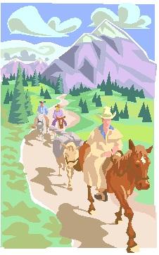 Trail Horses